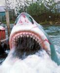 What was the name of the famous, man-eating shark?