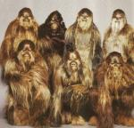 What is the name of the LARGE hairy creatures on the planet Kashyyyk?