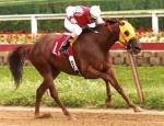 Which out of the following was a famous racehorse?