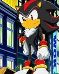 What is the correct conversation of Sonic and Shadow(When Sonic FIRST meets him)?