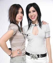 the veronicas pictures