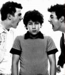 Finale Question: Would the Jonas Brothers date a fan?