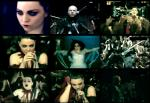 """Amy Lee has Bipolar disorder and takes """"Lithium"""" for it."""