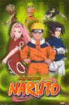 Does Naruto hate Sukura?
