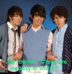 Last question are the Jonas brothers hot?