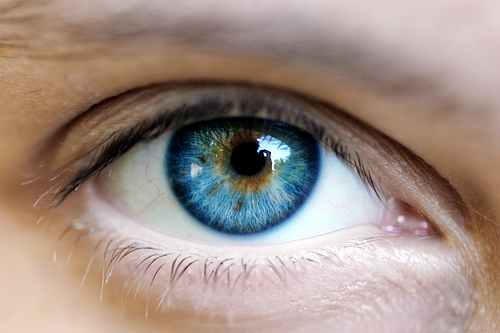 European Hair and Eye Color