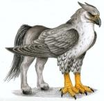 Where can you find a Hippogriff?