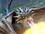 When was dragon breeding outlawed?