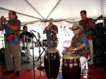 Typical instruments played in authentic classic salsa are congas, bass, brass instruments...