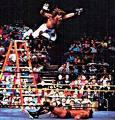 How many ladders are purchased yearly by WWE?