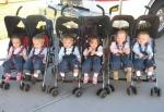 The Masche Sextuplets