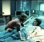 What story did Edward and his family tell Bella's parents when she got injured?