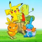 What Region do Torchic, Treeko and Mudkip come from?