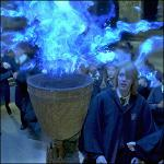 What was the first challenge of the triwizard tournament?