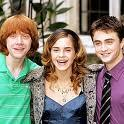 Where is the first place Ron, Hermione and Harry go to after Bill and Fleur's wedding?