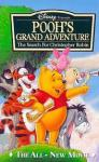 In the movie 'Pooh's Grand Adventure' where was Christopher Robin in the end?