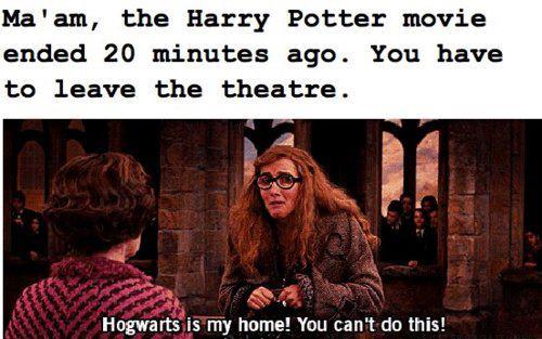 Gryffindor, Hufflepuff, Ravenclaw or Slytherin?