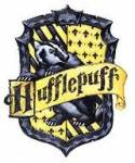 What Hogwarts house would you be sorted in?