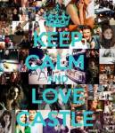 What Do Castle and Alexis Do Often?