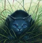 Bluestar: when? When will StarClan come to you SpottedLeaf? SpottedLeaf: I don't think StarClan has anything to say. The deputy, FireHeart ran up
