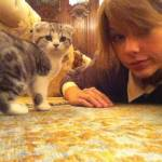 Taylor only has 1 cat