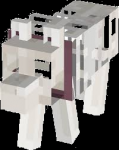 What is the name of his skeleton dog in his old lab (from 2013-2015)?