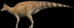 A little hard one here What dinosaur is this?