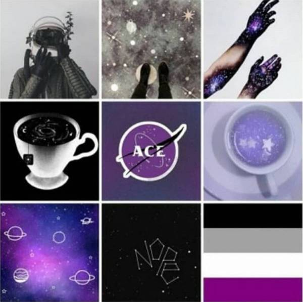 asexual aromantic test