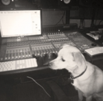 Who is Ariana's most media and gram famous dog?