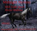 ((red)) Silver Black horse galloping through dark forest at night. ((ered))