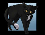 Which cat lives at the barn Ravenpaw ran away to?