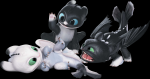 What is the name of the species of Toothless and his mate's offsprings?