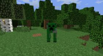 "Creepers were never meant to be in the game. According to creator Markus ""Notch"" Persson, he was originally trying to create a cow."