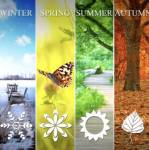 Which season is your favorite?