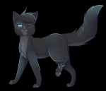 This is Cinderpelt