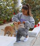 Which of these is the name of one of Ariana's dogs?