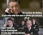 Why do you like Draco?