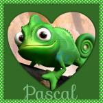 What animal is Pascel?