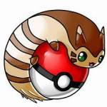 How tall is Furret?
